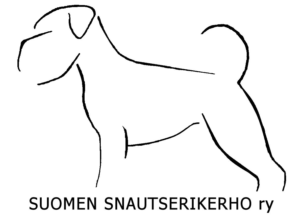 ssnk.fi